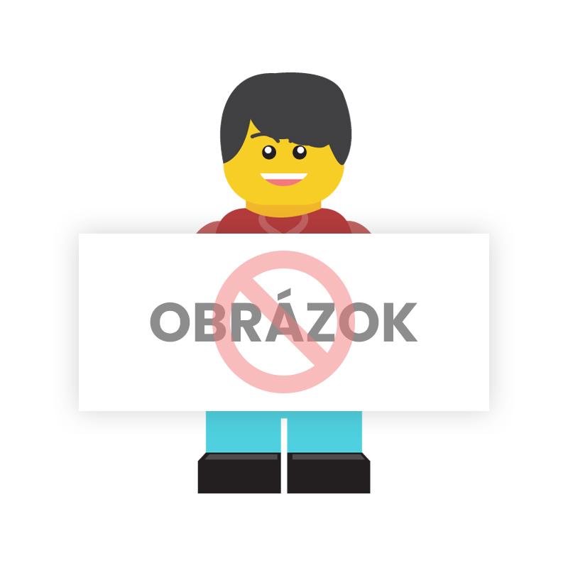 LEGO Friends 41356 Stephaniin srdiečkový box